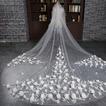 Velo da sposa Lungo Applique Chiesa Con il pettine Autunno eleganza