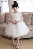 Abito cerimonia bambina Farfalla Ornamento A-Line Pizzo Estate decorato al ginocchio