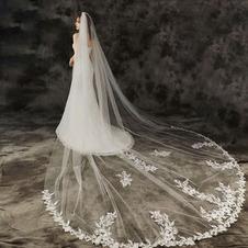 Velo da trascinamento cattedrale lungo velo da sposa accessori foto studio foto velo fabbrica all'ingrosso