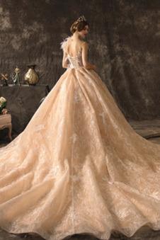 Abito da sposa decorato Pizzo Overlay Pizzo Piume Senza Maniche Allacciato